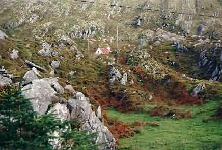 Irish Dream Homes...