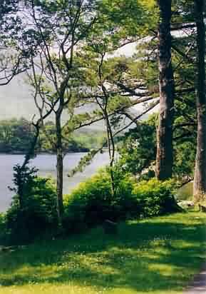 Ausgesprochen idyllisch ist wie gesagt auch der Park.