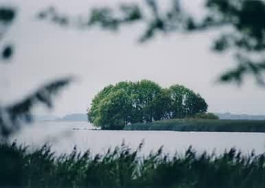 Blick aus dem Nationalpark auf den Lough Derg