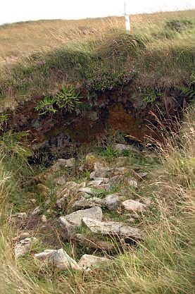 Noch eine freigelegte Grundstücksgrenze. Gut zu erkennen auch die Schichten des Bogs.