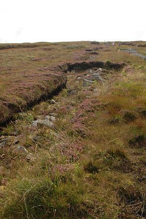 Grundstücksgrenze und einer der wenigen Pfade, auf denen man treten kann.