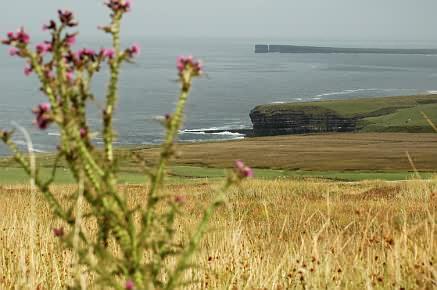 Blick von Ceide Fields Richtung Osten, in der Ferne der Downpatrick Head