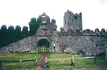 Clonony Castle, Eingang