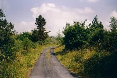 Einsame Landstraße 2